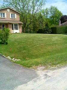 Do you need your lawn mowed, or driveway shovelled?