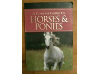 A concise guide to horses and ponies