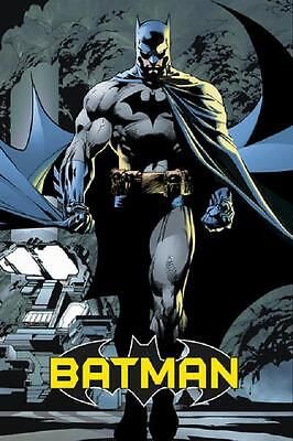 Batman Poster (BATMAN DARK KNIGHT POSTER, (Size)