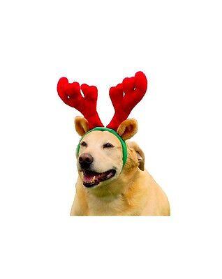 Urlaub Geweihe für Hunde - Klein oder Groß - Spaß Möglichkeit Ihr Haustier (Großer Hunde Urlaub Kostüm)