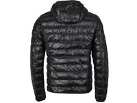 Wholesale north face and ea7 coats and jackets
