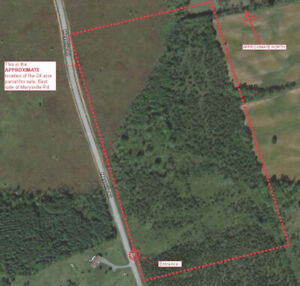 24 ACRES ON MAINTAINED RD. WITH 1200' OF FRONTAGE-$94,000.00