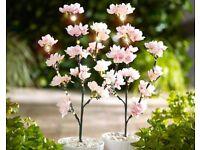 Cherry Blossom Lights 2 Pack