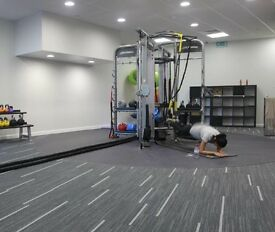 Life Fitness Synrgy 360, 4 sided, functional training rig