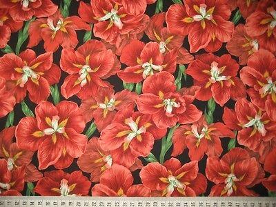 Kona Kona Bay Bay (Patchwork Quilt Stoff -  Kona Bay Lilie rot 14,- €/m)