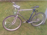 "Bike + FREE GIFT . 26"" Wheels, Bicycle in excellent Working Condition. 21 shimano speed."