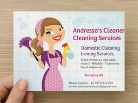 Andressa's CLEANER 07874916724