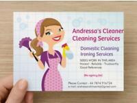 Andressa's CLEANER 07874916724