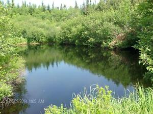 5 acres Seeley's Cove, $42000