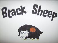 Blacksheep-Entertainment .Offer Disco and Theme nights/days. Birthdays weddings etc