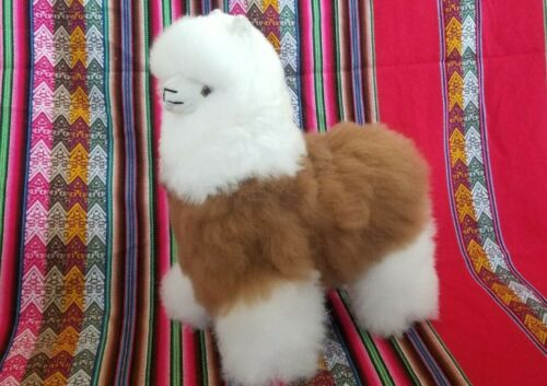 Alpaca bb fur Peruvian Handmade  Llama 12x9 inches original photograph
