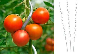 25 Stück Tomatenspiralstab 180cm Tomaten Spiralstab Pflanzstab Pflanzspiralstab