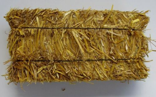 Dakota Hay Products Bedding Straw for Rabbits, Sm. Pets 4 Bales per pack  8 lbs