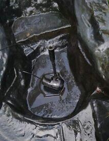 Garden Pond Pump for sale