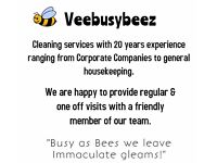 VeebusyBeez Housekeeping & Cleaning Services.