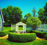 Gardening and landscaping services. Free quoting now