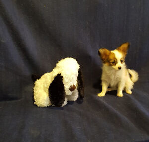 Puppies Papillon. 3