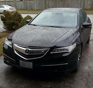 2017 Acura TLX Tech Package - Lease Takeover (ONLY $450/month)