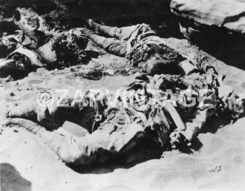 Vtg WWII Japanese Soldiers After Bombing On Island Photo #1788