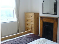 Female housemate wanted for gorgeous double room great location near park (bills included)