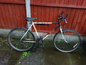 raleigh ltd edtion 2 barn find