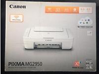 Canon Pixma MG2950 print/copy/scan
