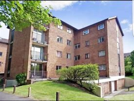 Amazing 2 bedroom Flat Campion Close
