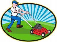 All garden jobs wanted