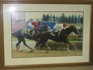 Winning Thoroughbred Picture