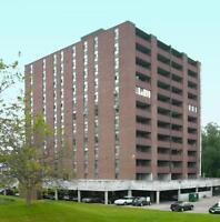 Phoenix Mill Apartments - 364 Waterloo Ave - Near Hanlan Parkway