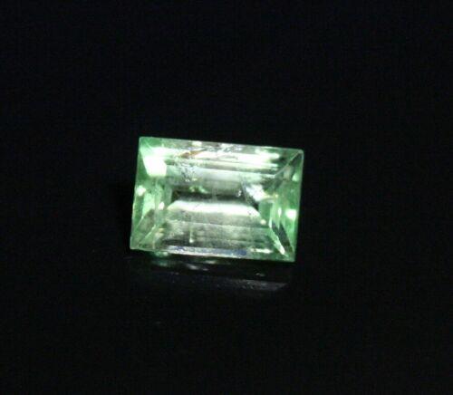 0.52ct BiColour Tsavorite / Leuco Garnet - Exceptionally Rare Grossular Garnet