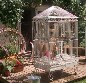 Antique iron bird cage for plants or decor
