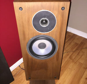 GET YOUR SPEAKERS REFOAMED/REPAIRED