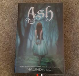 YA fantasy book - Ash (ex library)