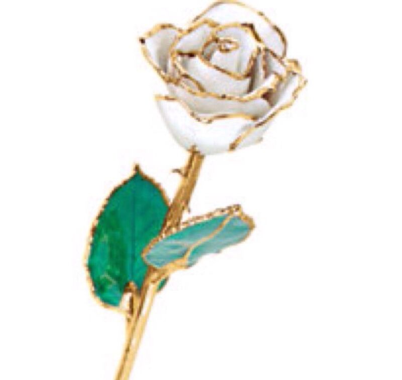 24K Yellow Gold Trimmed White Rose April Diamond White Real Long Stem Rose