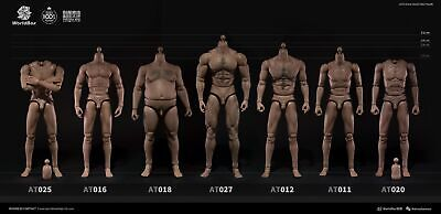 Worldbox 1/6 Scale Male Action Figure Body FR Hot Toys Phicen Head Crazy Durable