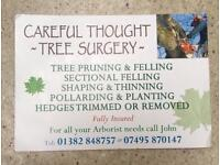 🌳🍃Careful thought tree surgery and landscaping🍃🌳