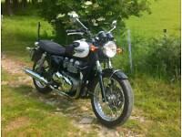 Triumph Bonneville T100 efi (2007)