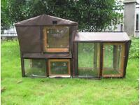 Guinea pig and hutch with cover