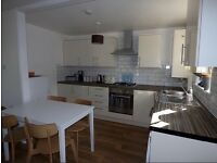 2 Bed Flat furnished/unfurnished in Catford to Rent recently decorated,close to trains,bus £300pw
