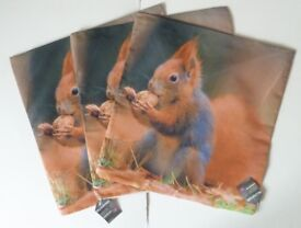 3 squirrel cushion covers