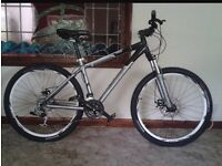 Adults giant tarago mountain bike