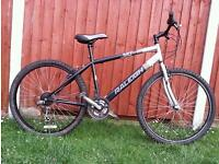Adult Mountain Bike in Excellent Condition