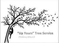 Tree Pruning/Removal Service