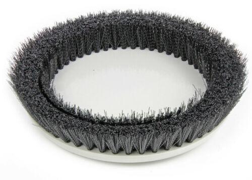 Medium Duty Scrub Brush - Prolux Core Buffing Machine Moderate Surface Cleaning