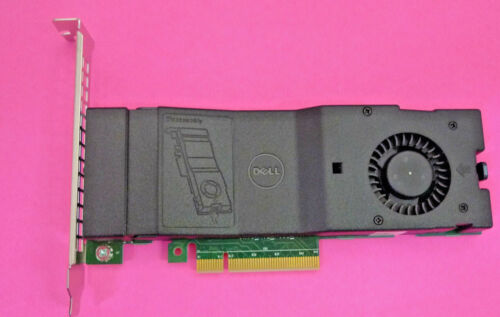 Genuine Dell SSD M.2 PCIe x2 Solid State Storage Adapter Card NTRCY