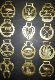solid brass.12 x horse brasses