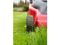 Lawn Mowing services - very reliable