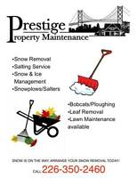 **SNOW IS ON THE WAY!!*** ARRANGE YOUR REMOVAL TODAY!