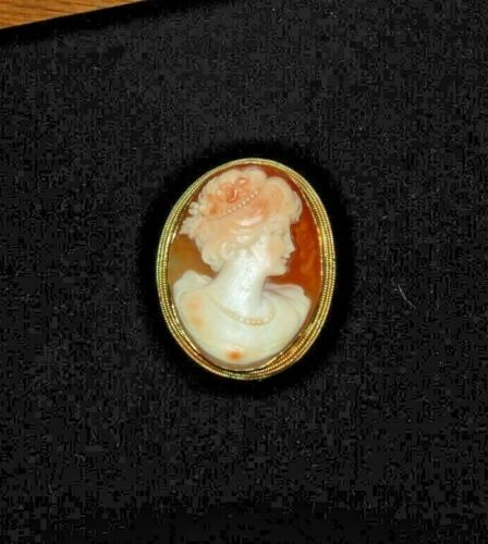 Lovely and A Standout     Antique Framed Cameo Pin       Great Detail